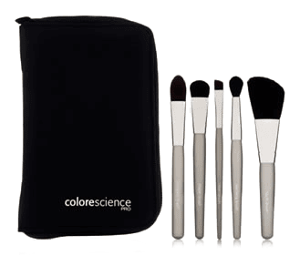 Travel Makeup Brushes
